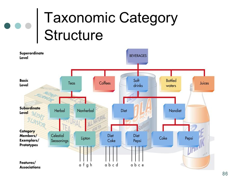 86 Taxonomic Category Structure