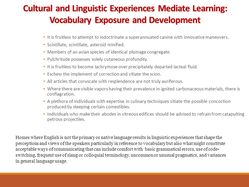 Cultural and Linguistic Experiences Mediate Learning: Vocabulary Exposure and Development It is fruitless to attempt to indoctrinate a superannuated canine with innovative maneuvers.