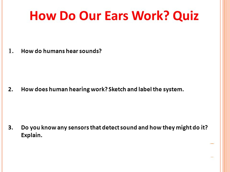 The Marvelous Ear. How Do Our Ears Work? Quiz 1. How do humans hear ...