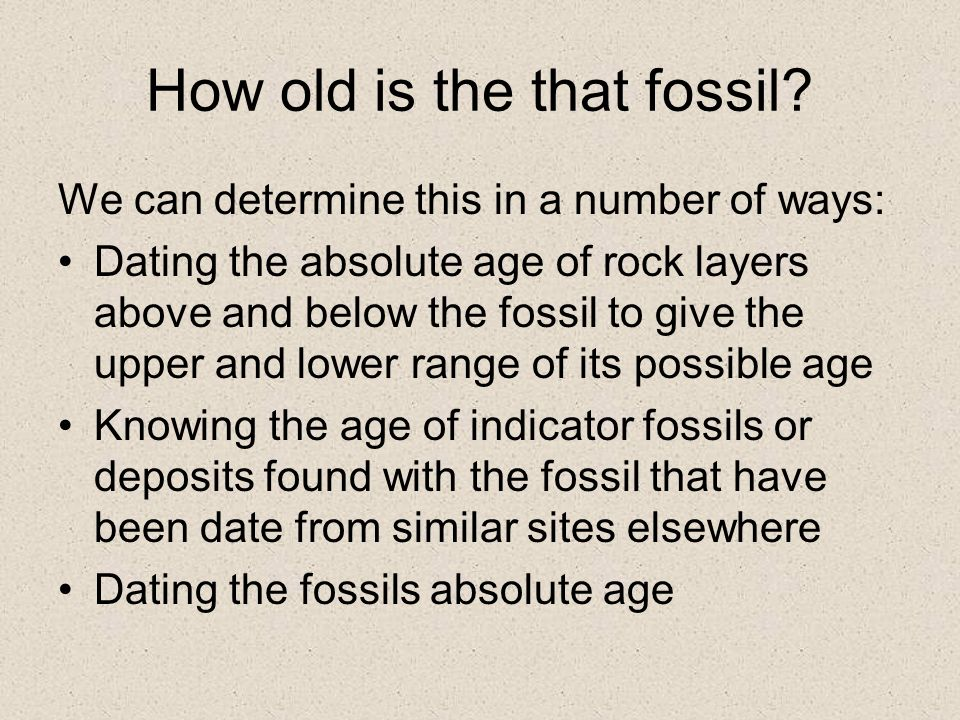 Hookup the fossil record answer key