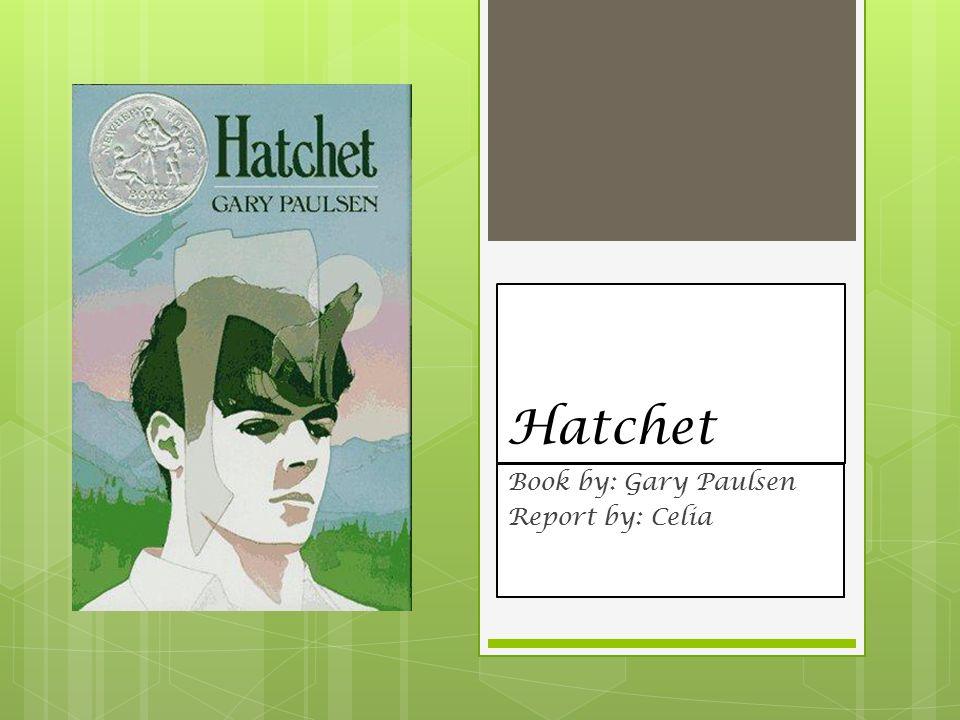 a plot review of gary paulsens hatchet