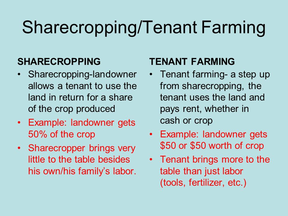 tenant farming and sharecropping essay Images of sharecropping pictures money sharecropping pictures money - bing video tenant farming vs sharecropping pagination 1 2 3 4 5.