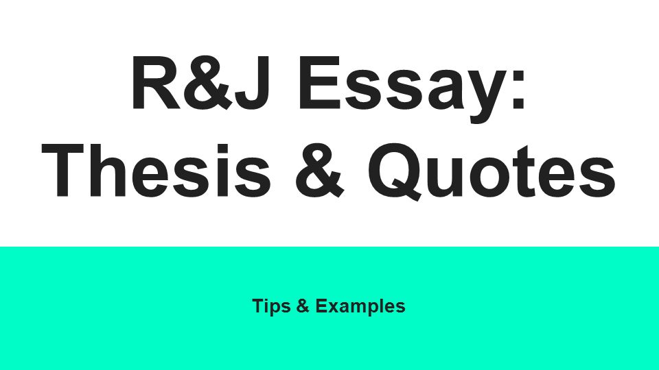 Other words for essay