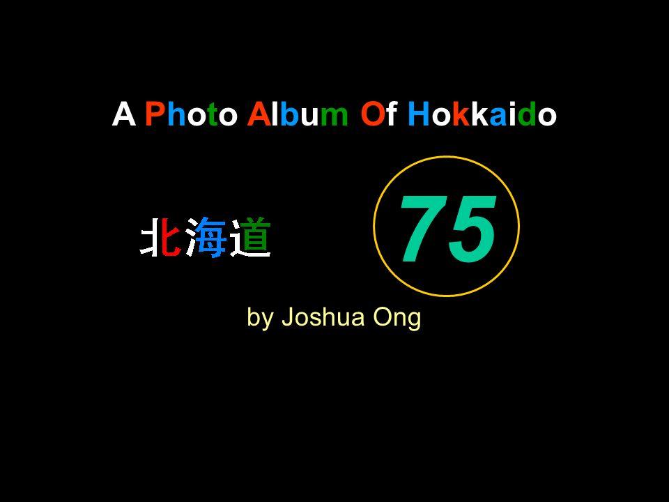 A Photo Album Of Hokkaido by Joshua Ong 75