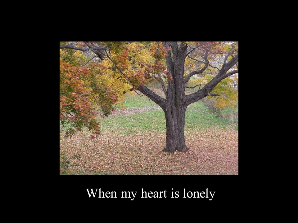 When my heart is lonely
