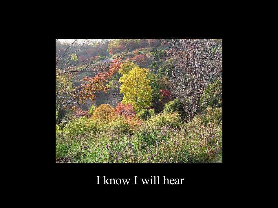I know I will hear