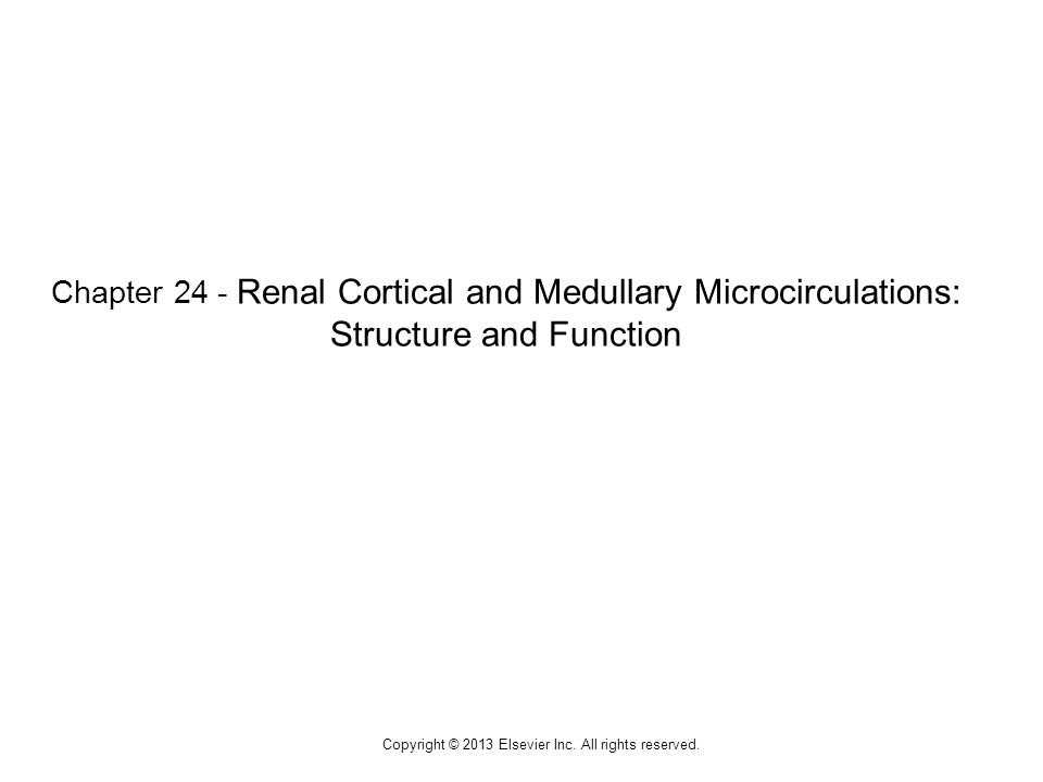 1 Chapter 24 - Renal Cortical and Medullary Microcirculations: Structure and Function Copyright © 2013 Elsevier Inc.