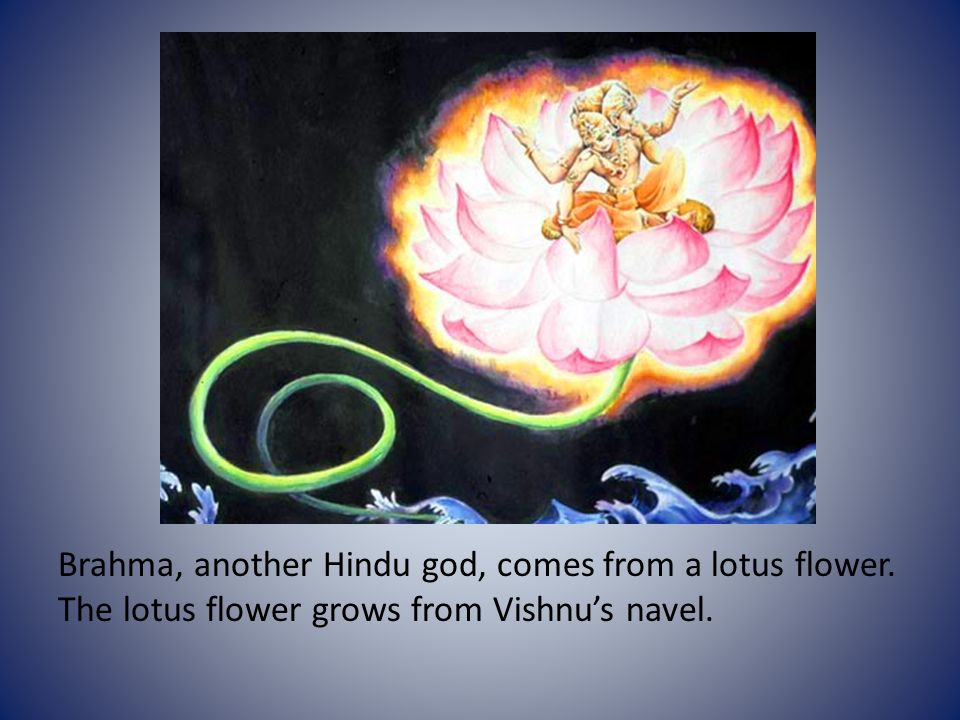 Creation myths hinduism in the hindu creation myth the universe 3 brahma another hindu god comes from a lotus flower the lotus flower grows from vishnus navel mightylinksfo
