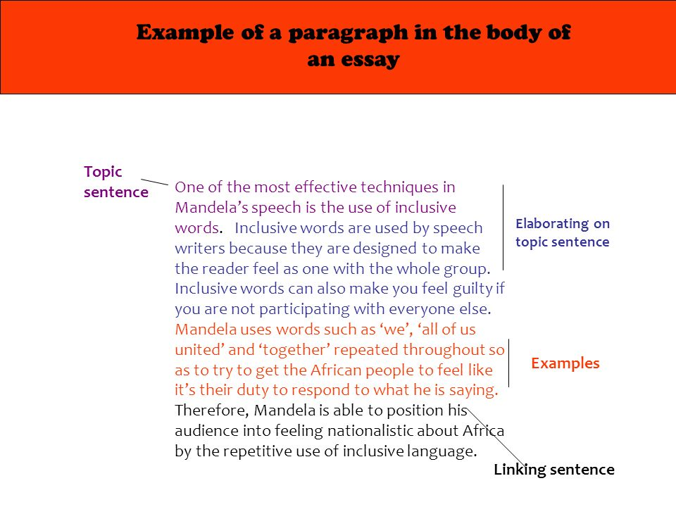 the example of essay