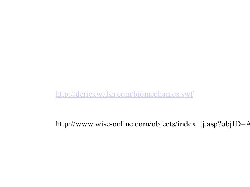 Modern Wisc Online Anatomy Festooning - Image of internal organs of ...