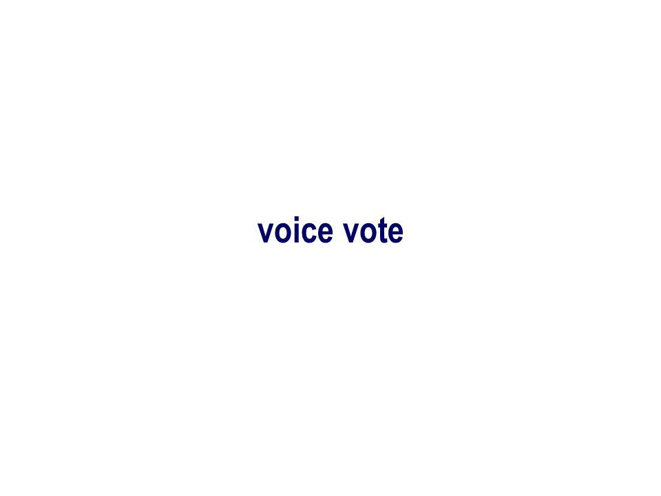 voice vote