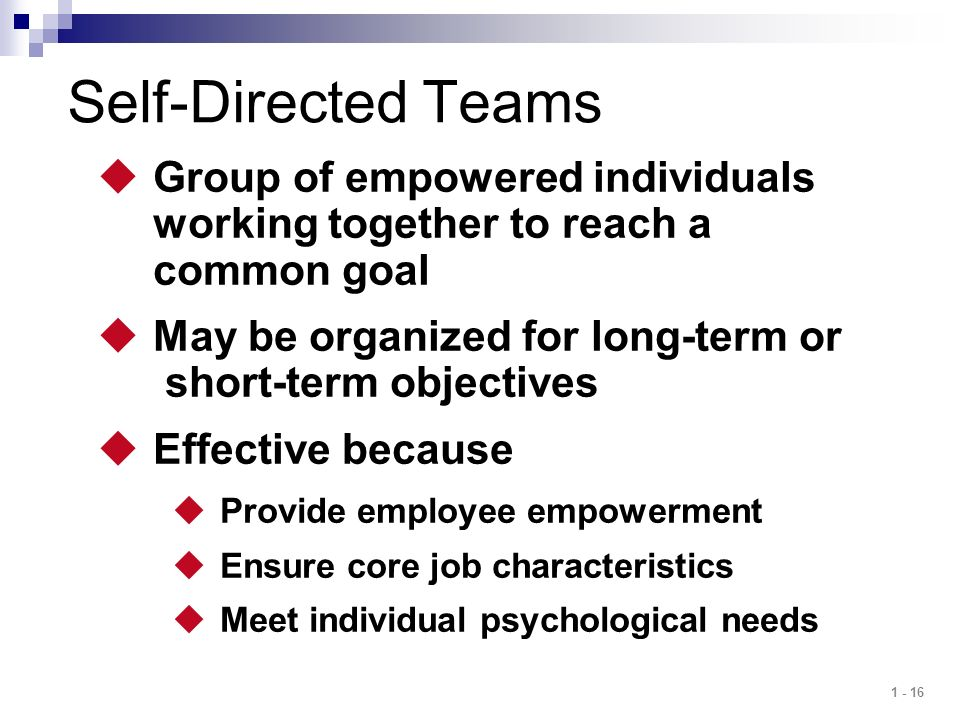 1 - 16 Self-Directed Teams  Group of empowered individuals working together to reach a common goal  May be organized for long-term or short-term obj