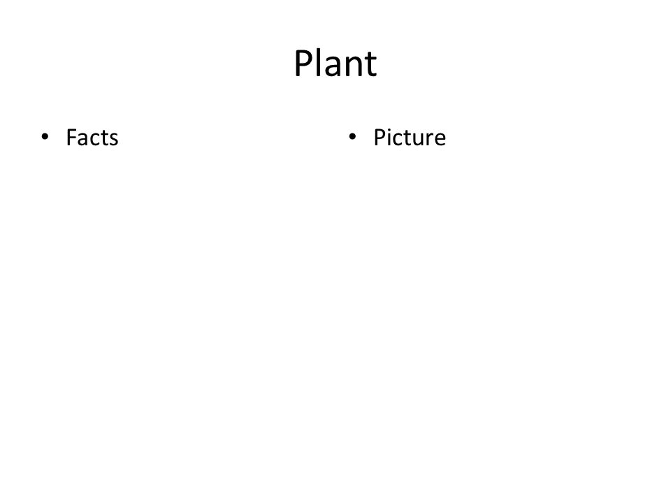 Plant Facts Picture
