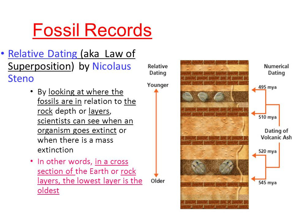 What is relative hookup in terms of fossils