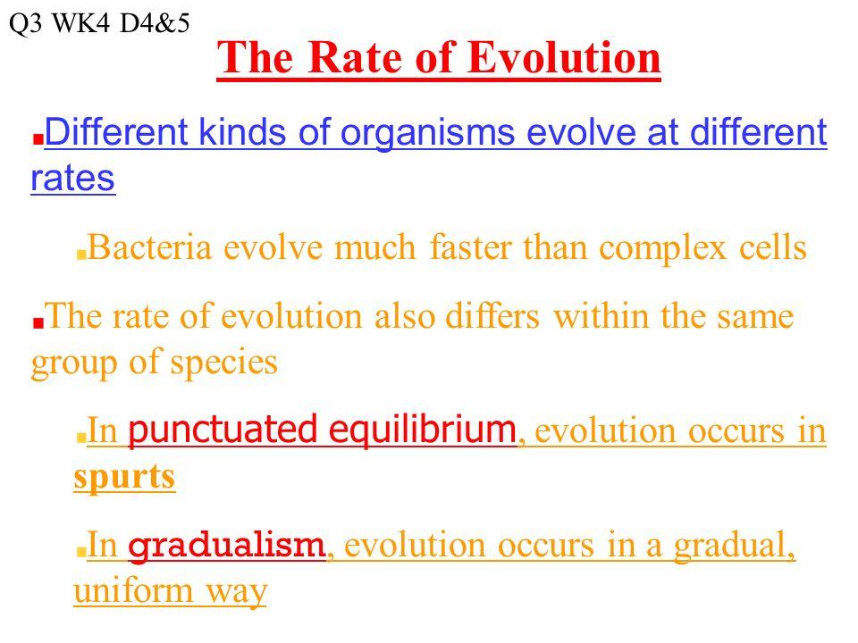 Monday 282016 Agenda Evolution Part Ii Activity Darwins
