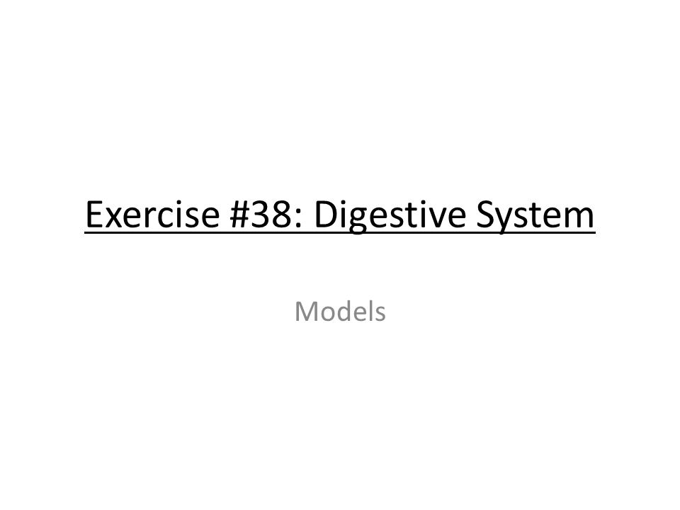 Exercise #38: Digestive System Models. Right lobe of the liver Left ...