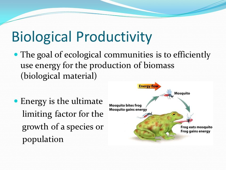 Biological Productivity The goal of ecological communities is to efficiently use energy for the production of biomass (biological material) Energy is the ultimate limiting factor for the growth of a species or population