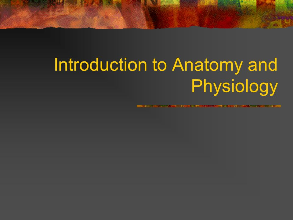 Introduction to Anatomy and Physiology. Vocabulary Review Review the ...