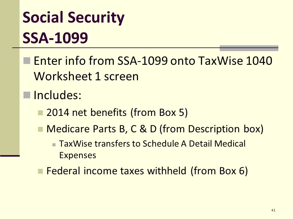 Entering Basic Taxpayer Information into TaxWise Pub ppt download – 1099 Worksheet