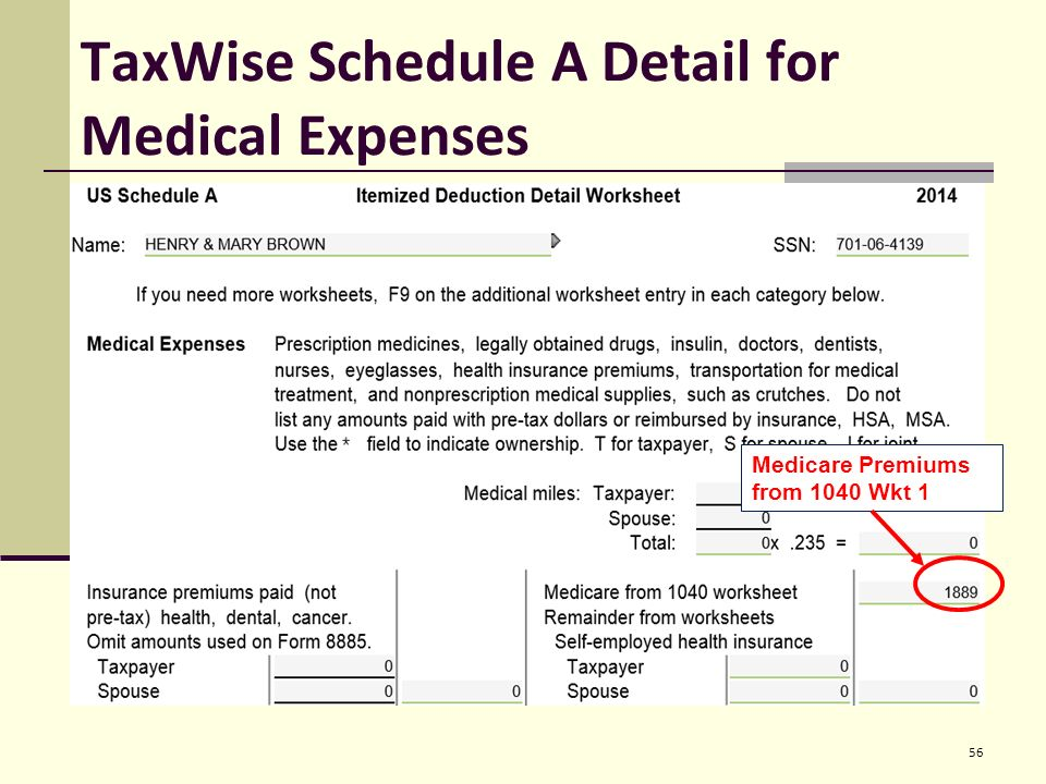 Entering Basic Taxpayer Information into TaxWise Pub ppt download – 1040 Worksheet