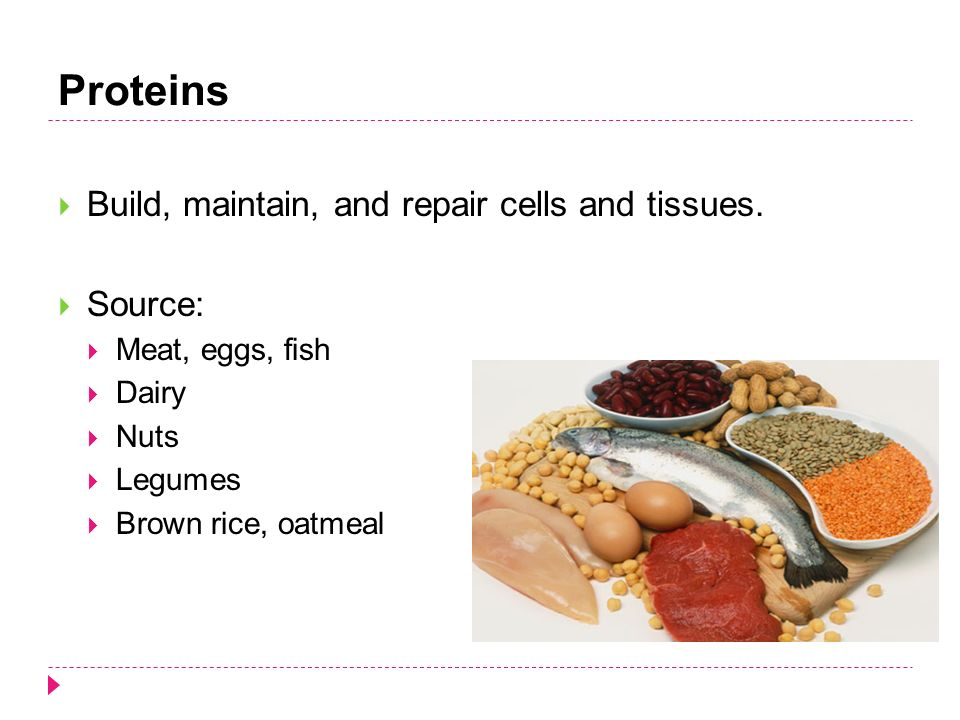 Proteins  Build, maintain, and repair cells and tissues.