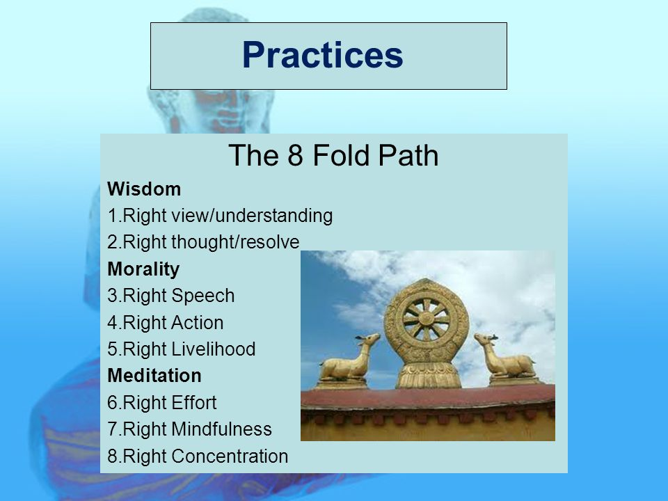 Practices The 8 Fold Path Wisdom 1.Right view/understanding 2.Right thought/resolve Morality 3.Right Speech 4.Right Action 5.Right Livelihood Meditation 6.Right Effort 7.Right Mindfulness 8.Right Concentration