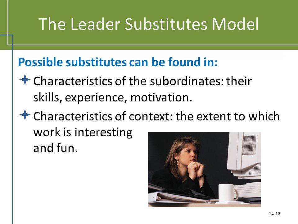 The Leader Substitutes Model Possible substitutes can be found in:  Characteristics of the subordinates: their skills, experience, motivation.