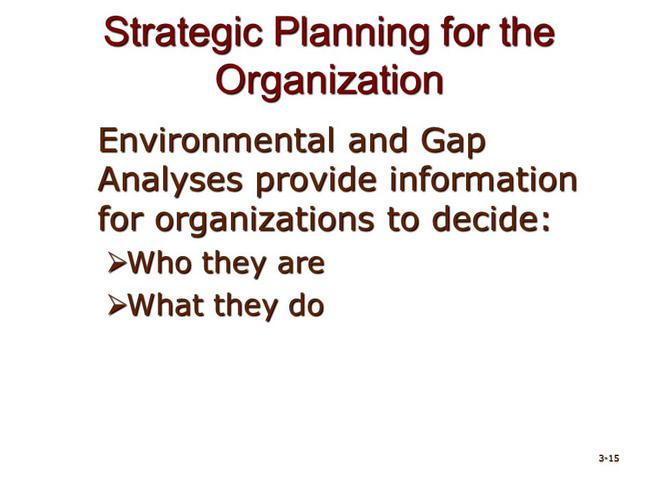 Strategic Planning for the Organization Environmental and Gap Analyses provide information for organizations to decide:  Who they are  What they do 3-15