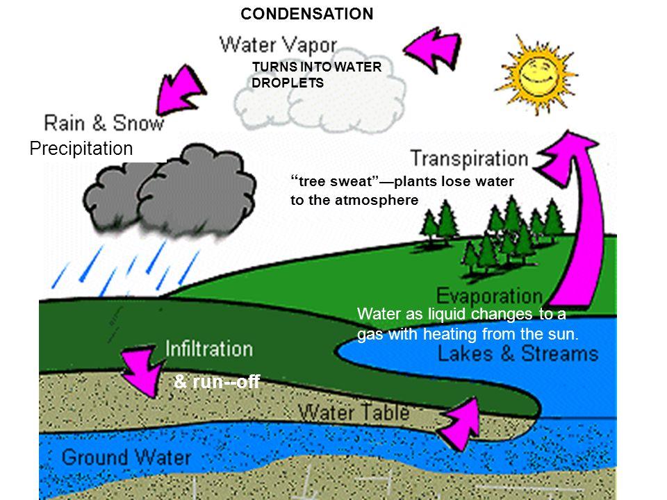evaporation and condensation