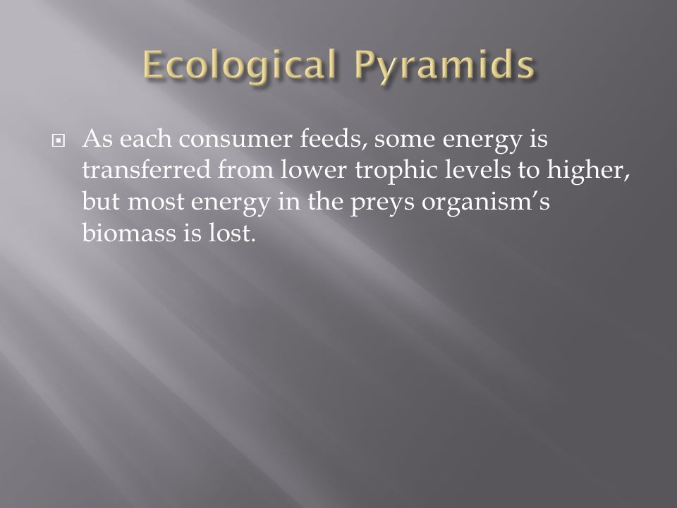  As each consumer feeds, some energy is transferred from lower trophic levels to higher, but most energy in the preys organism's biomass is lost.