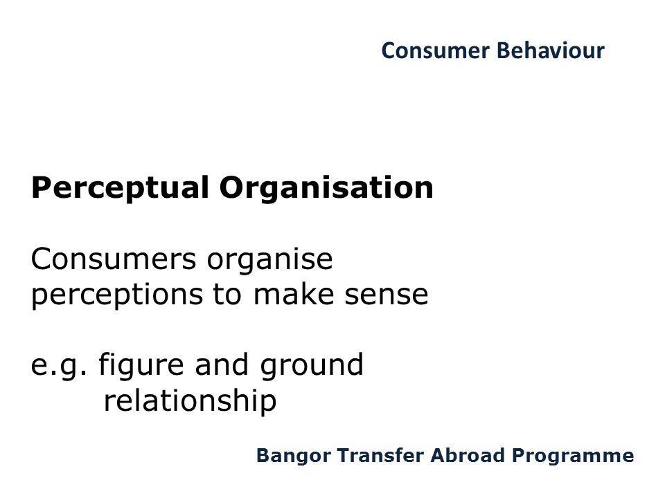Consumer Behaviour Bangor Transfer Abroad Programme Perceptual Organisation Consumers organise perceptions to make sense e.g.