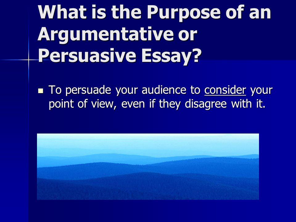 Argumentative essay point of view