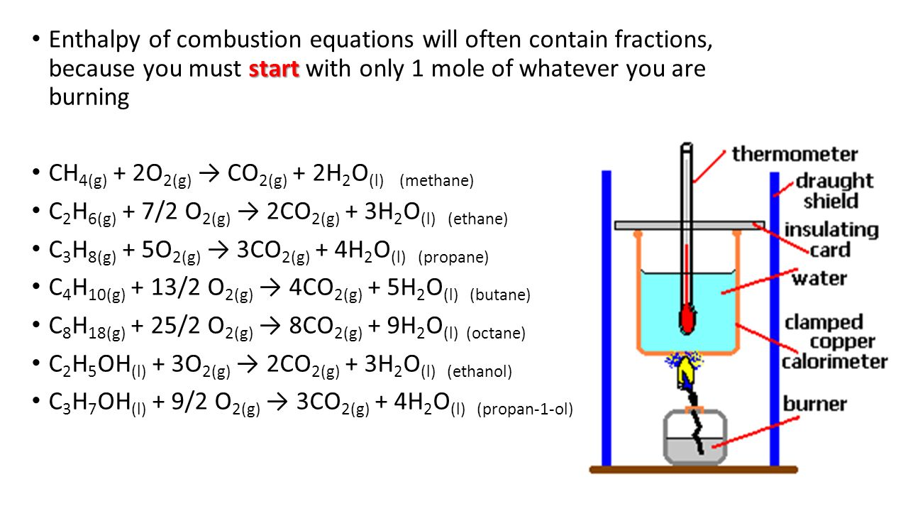 enthalpy of combustion lab report essay
