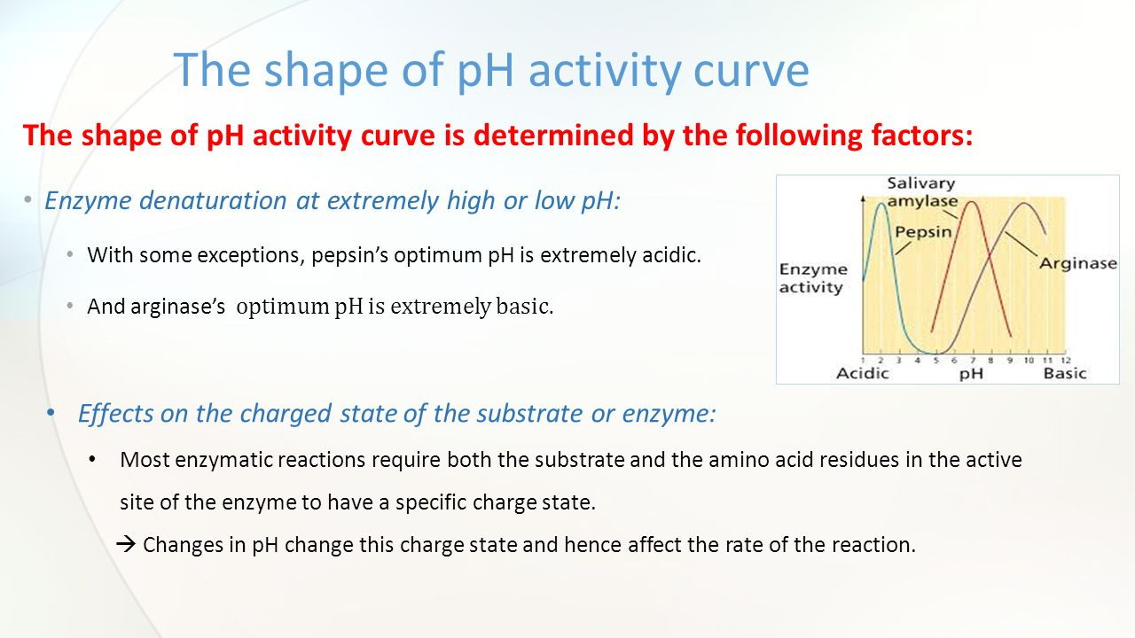 the effect of ph on the rate of an enzyme controlled reaction [factors affecting enzyme reaction rates] how substrate concentration affects reation rate the graph shows that when the concentration of enzyme is maintained.