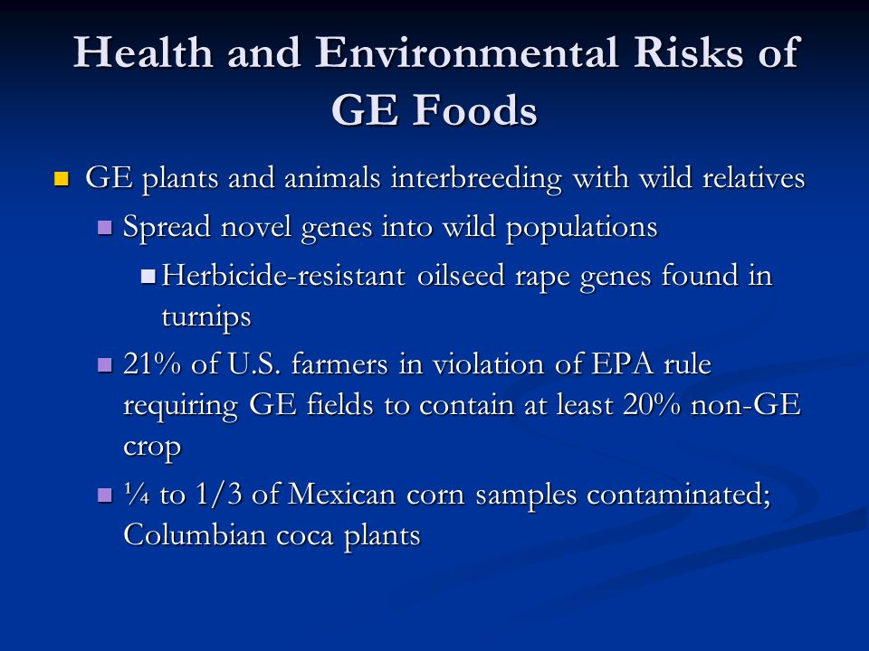 Health and Environmental Risks of GE Foods GE plants and animals interbreeding with wild relatives GE plants and animals interbreeding with wild relatives Spread novel genes into wild populations Spread novel genes into wild populations Herbicide-resistant oilseed rape genes found in turnips Herbicide-resistant oilseed rape genes found in turnips 21% of U.S.