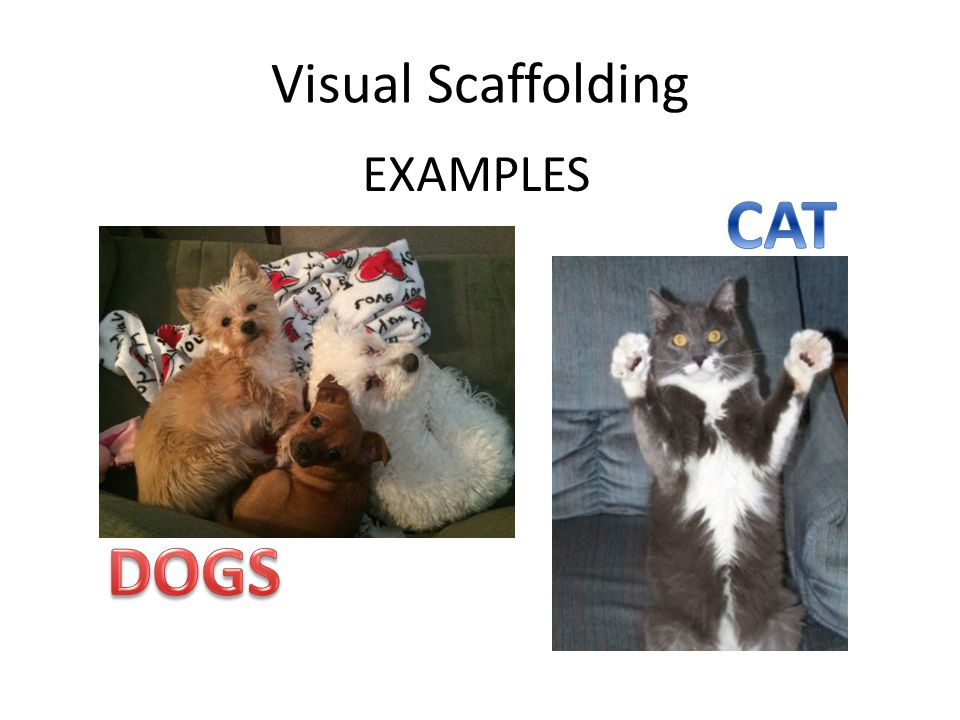 Visual Scaffolding EXAMPLES
