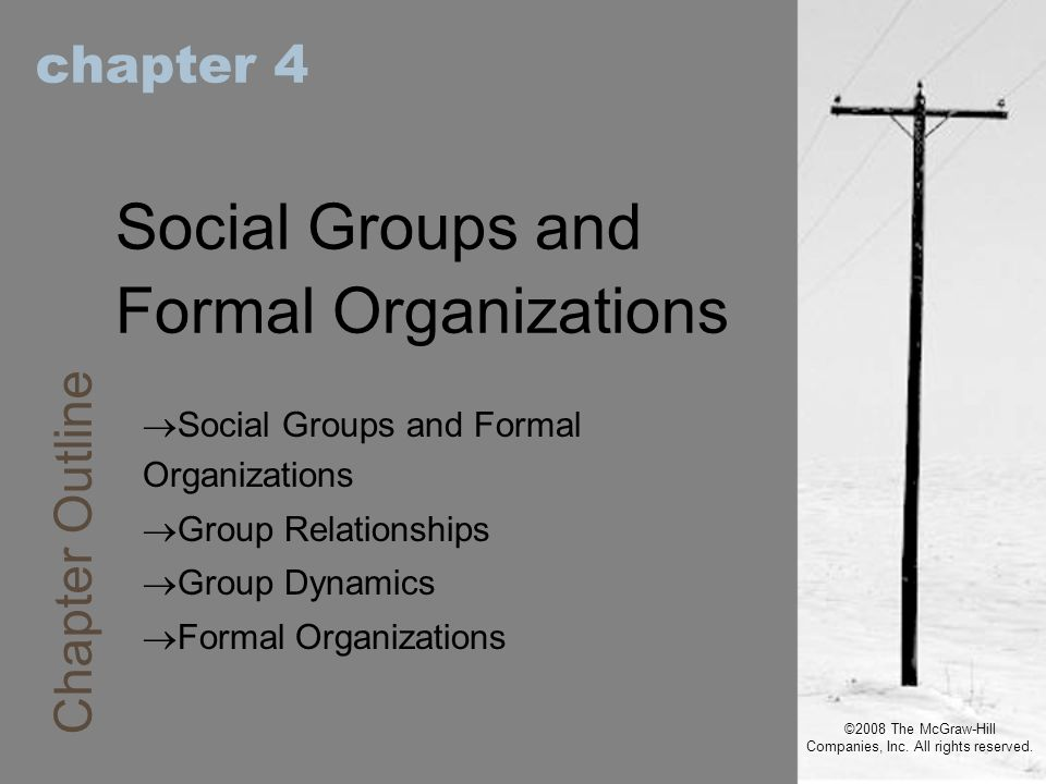 ©2008 The McGraw-Hill Companies, Inc. All rights reserved. chapter 4 Social Groups and Formal Organizations  Social Groups and Formal Organizations 