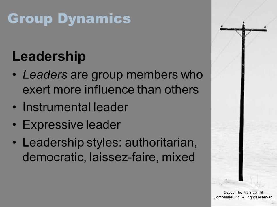 ©2008 The McGraw-Hill Companies, Inc. All rights reserved. Leadership Leaders are group members who exert more influence than others Instrumental lead