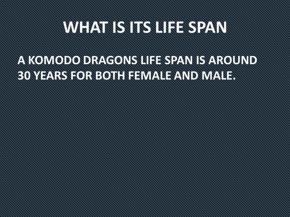 WHAT IS ITS LIFE SPAN A KOMODO DRAGONS LIFE SPAN IS AROUND 30 YEARS FOR BOTH FEMALE AND MALE.