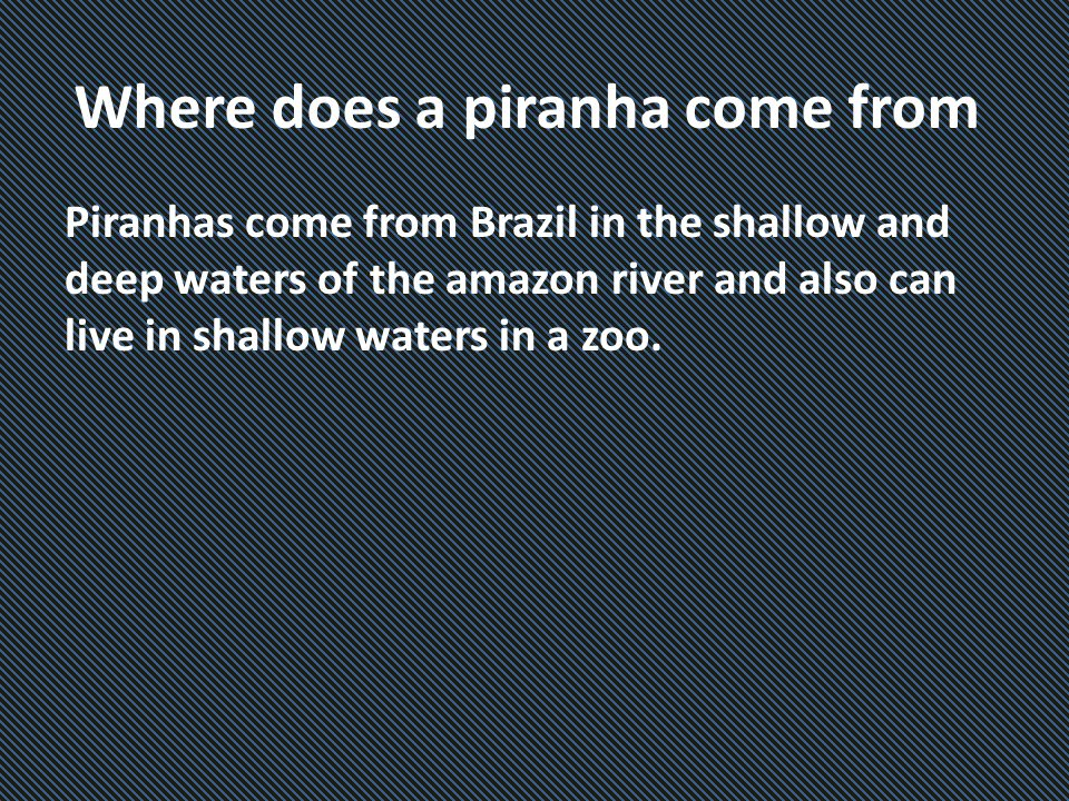 Where does a piranha come from Piranhas come from Brazil in the shallow and deep waters of the amazon river and also can live in shallow waters in a zoo.