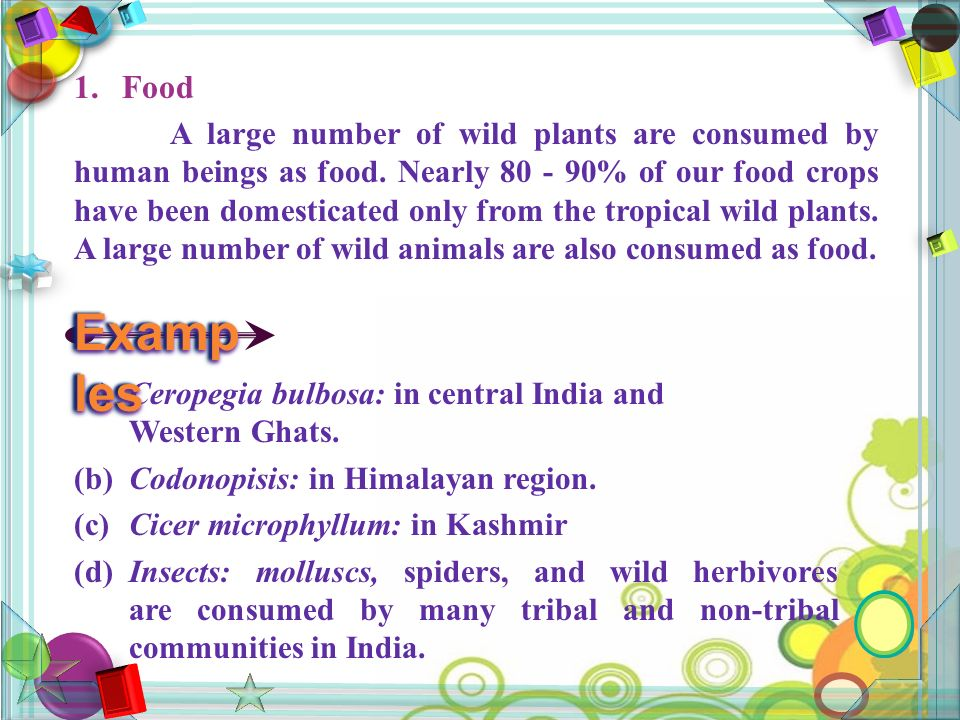 1.Food A large number of wild plants are consumed by human beings as food.