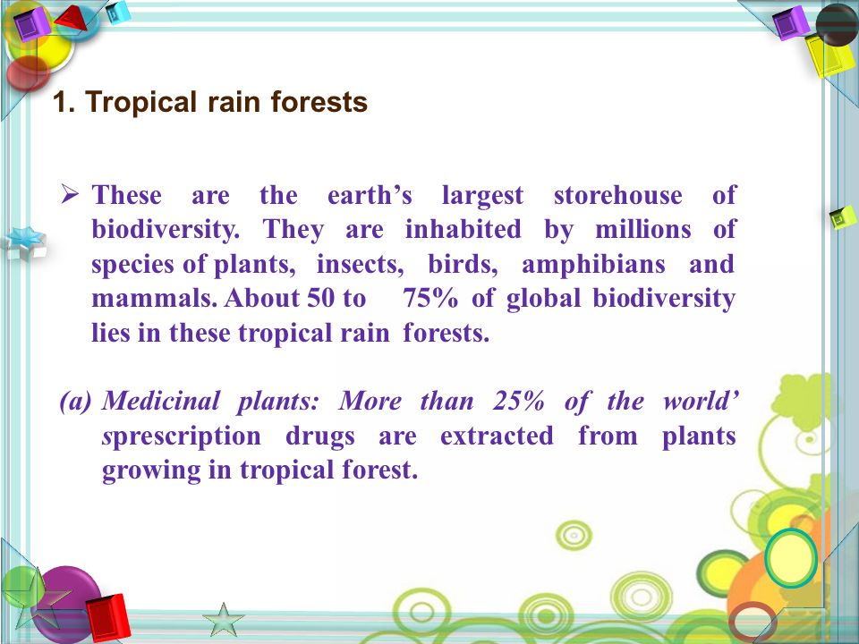1. Tropical rain forests  These are the earth's largest storehouse of biodiversity.