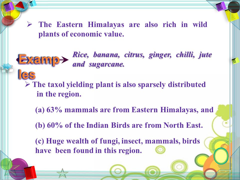  The Eastern Himalayas are also rich in wild plants of economic value.