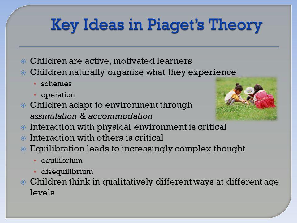 Key Theories of Child Development Worksheet - Key Theories of ...