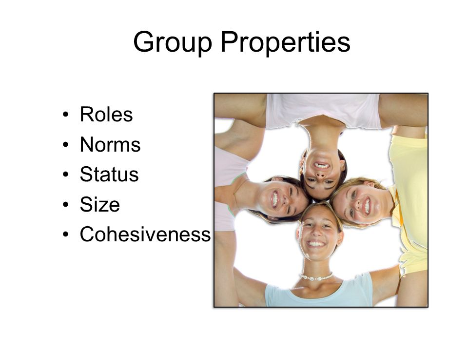 Group Properties Roles Norms Status Size Cohesiveness