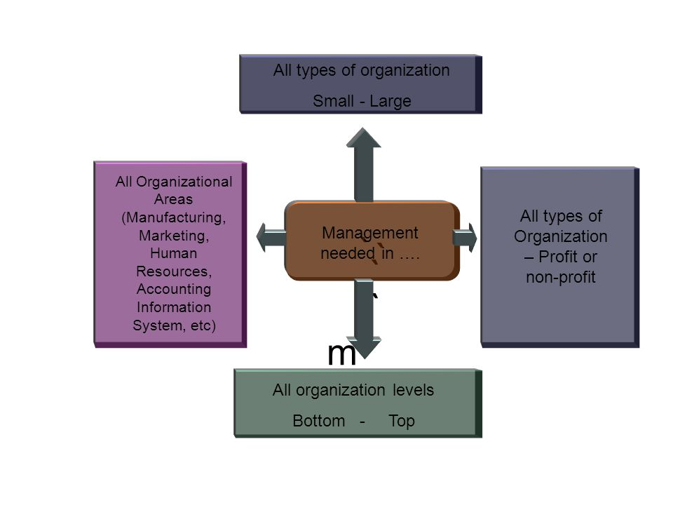 ` ` ` ` All Organizational Areas (Manufacturing, Marketing, Human Resources, Accounting Information System, etc) m All types of Organization – Profit