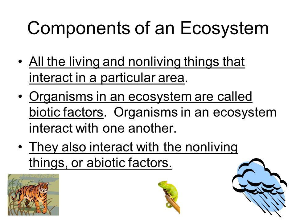 What do you call a community of organisms and their nonliving environment?
