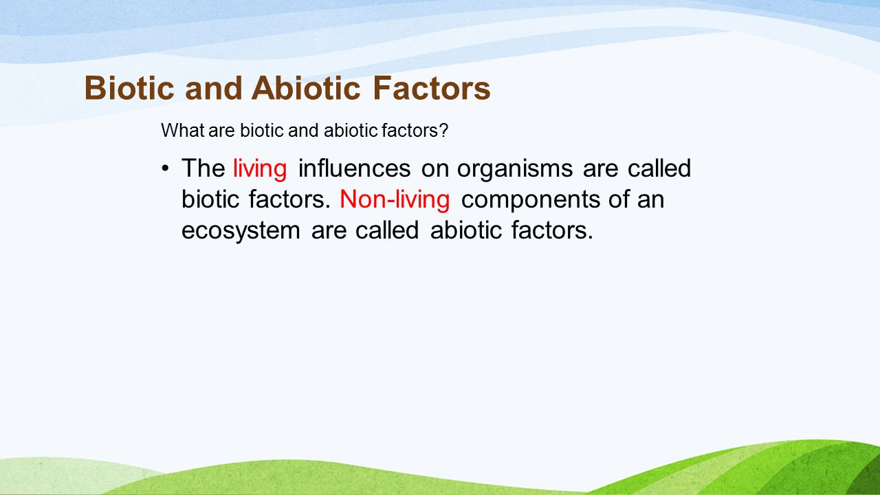 a definition of ecosystem and the factors influencing ecosystems The abiotic factors effect the ecosystem and play a light is the primary source of energy to almost all ecosystems definition list of abiotic factors  soil.