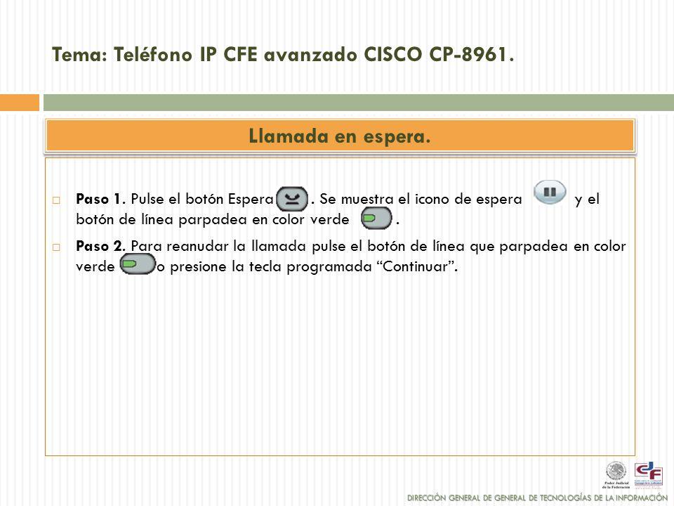 TELEFONÍA IP. DIRECCIÓN GENERAL DE TECNOLOGÍAS DE LA INFORMACIÓN ...