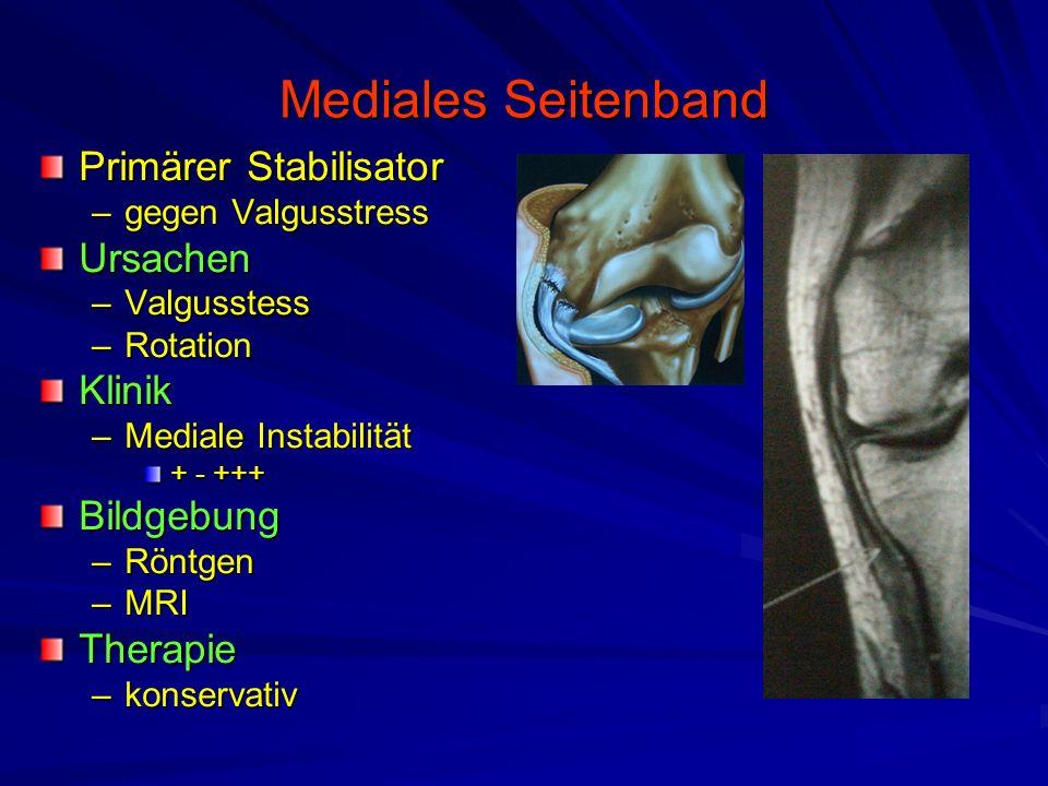 Ziemlich Laterale Seitenband Galerie - Anatomie und Physiologie des ...